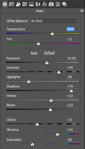 Lightroom Landscape Preset basic settings